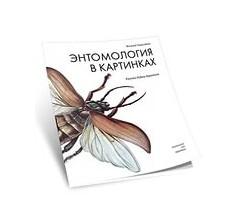 Сладков Н. Энтомология в картинках.