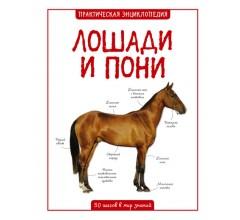 Бедуаер К.Лошади и пони